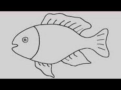 صورة تعليم رسم السمك , ازاي نرسم سمكه