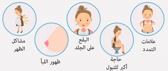 صورة الحمل فى الشهر السادس ماذا يحدث للحامل في الشهر السادس