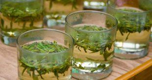 صورة فوائد شراب الزعتر , الاعشاب الطبيعيه وفوائدها للصحه