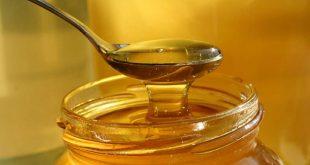 صورة تكبير البويضات بالعسل , العسل من اجمل المنشطات للمبيض