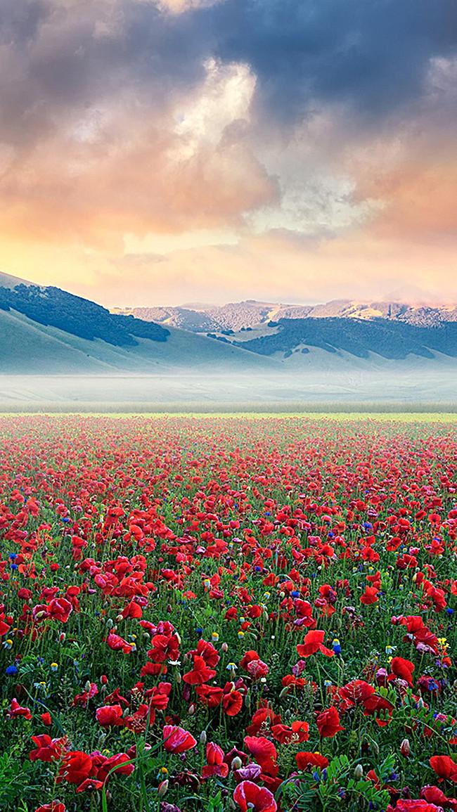 خلفيات جميلة الطبيعة Tabiea Blog