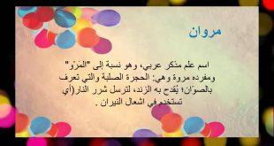 صورة معني اسم مروان , تعرف على معنى مروان في قاموس اللغه العربيه