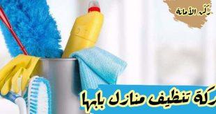 صور شركة تنظيف منازل بابها , جودة عاليه وخدمات مميزة لشركه بابها