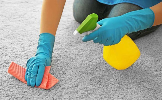 صور كيفية تنظيف السجاد وهو مفروش , طرق تنظيف السجاد
