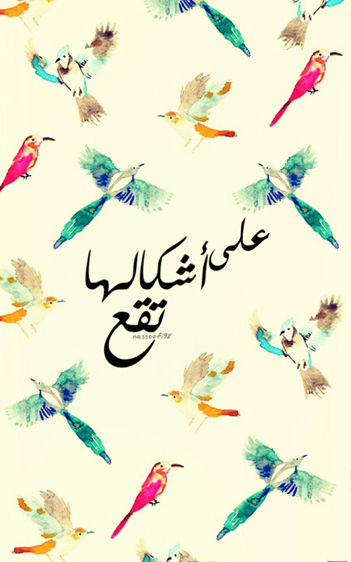 صور معنى الطيور على اشكالها تقع , اصل المثل ومعناه الطيور على اشكالها تقع