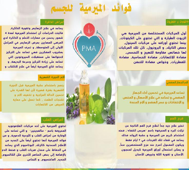 صورة فوائد عشبة الميرمية , تمتع بصحة ممتازة مع نبات الميرمية