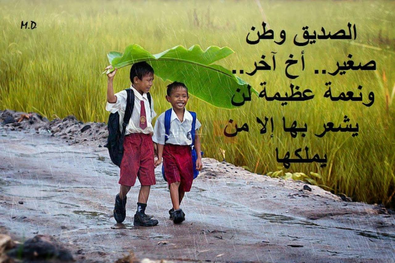 صورة رسائل مدح صديق عزيز , كلمات و عبارات رائعة و معبره عن الصديق