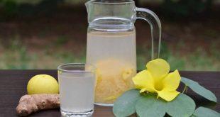 صور خلطة الزنجبيل والليمون للتنحيف , خسسي وزنك في اسبوع مع مشروب الزنجبيل و الليمون