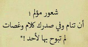 صورة كلام عجيب وحلو , ما قد قيل عن عجيب كلام وحلو عبارات