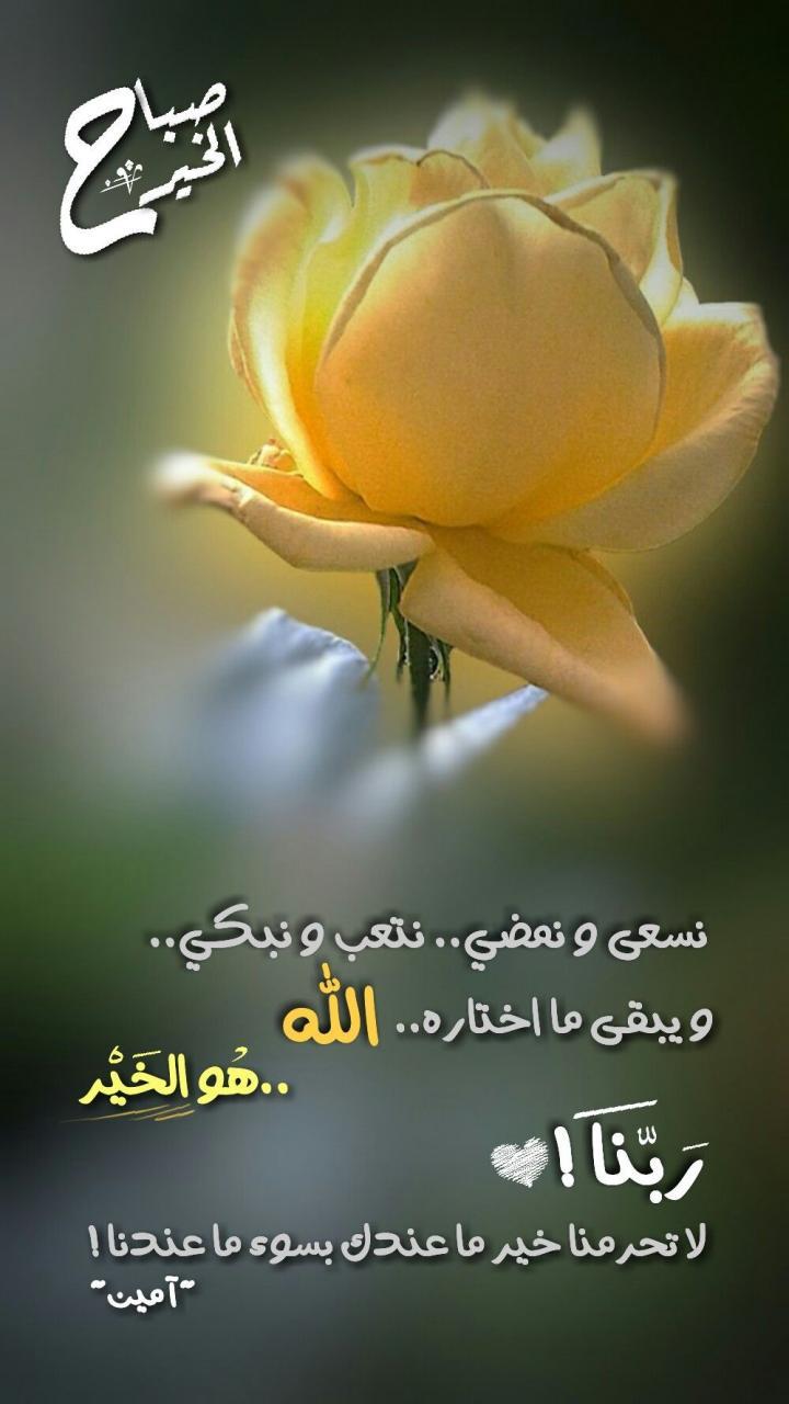 صورة تحية الصباح اسلامية , ما يقال فى الصباح اعذب التحيات الصباحية