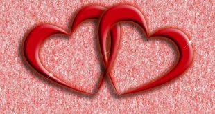 صورة القلب يحب مرة , هل القلب يحب مرة واحدة فقط