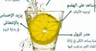 صورة فوائد الماء مع الليمون , مفيد جدا ولازم كلنا نشربوه دايما