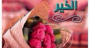 صورة اجمل صور لاحلي حبيب فالدنيا , صور مساء الخير واتس اب