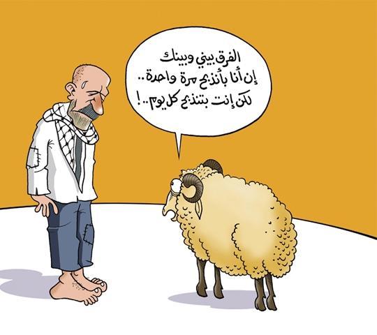 خروف العيد مضحك ما اجمل هذا الحروف الرائع طقطقه