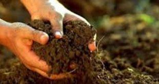 صورة ما الذي تعرفه عن التربة , معلومات عن التربة